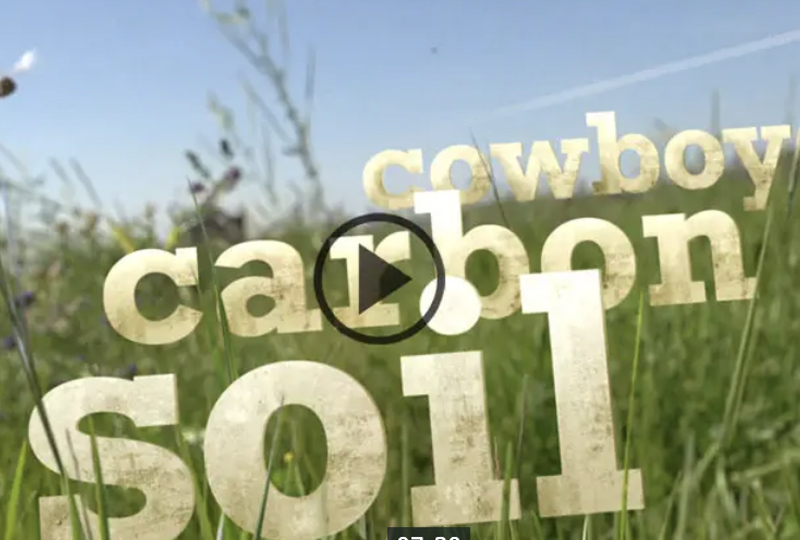Cwboy CarbonSoil video