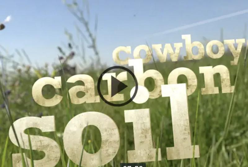 Cwboy CarbonSoil video